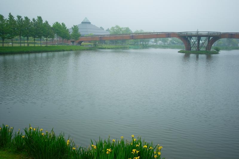 大賀ホールと橋-m.JPG